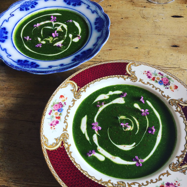 Nettle and Nutmeg Soup